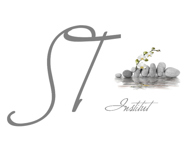ST-Institut